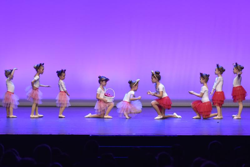 Mini Ballett 1/2